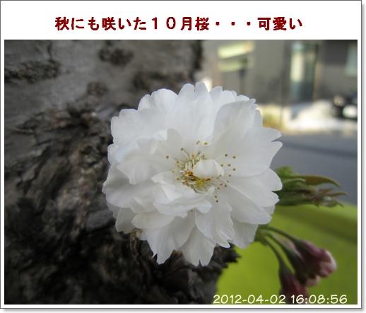 Img_2057